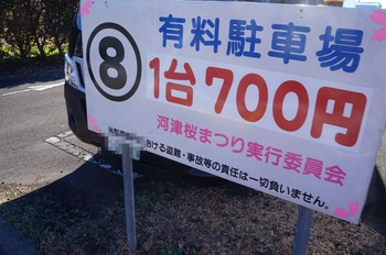 DSC02155.jpg