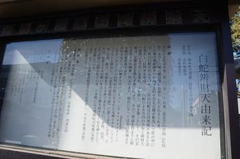 DSC07258.jpg