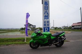 DSC08491.jpg