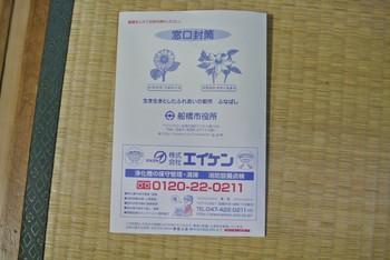 DSC_6581.jpg