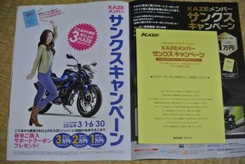DSC_1387.jpg