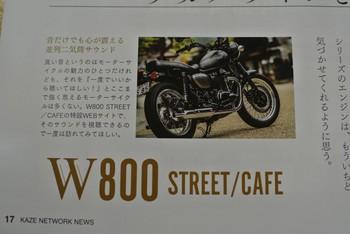 DSC_9037.jpg